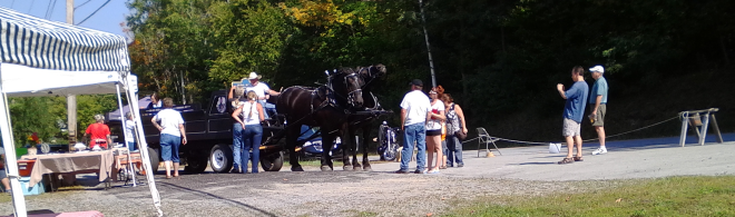 jd-percherons-at-2015-edinburg-fall-festival